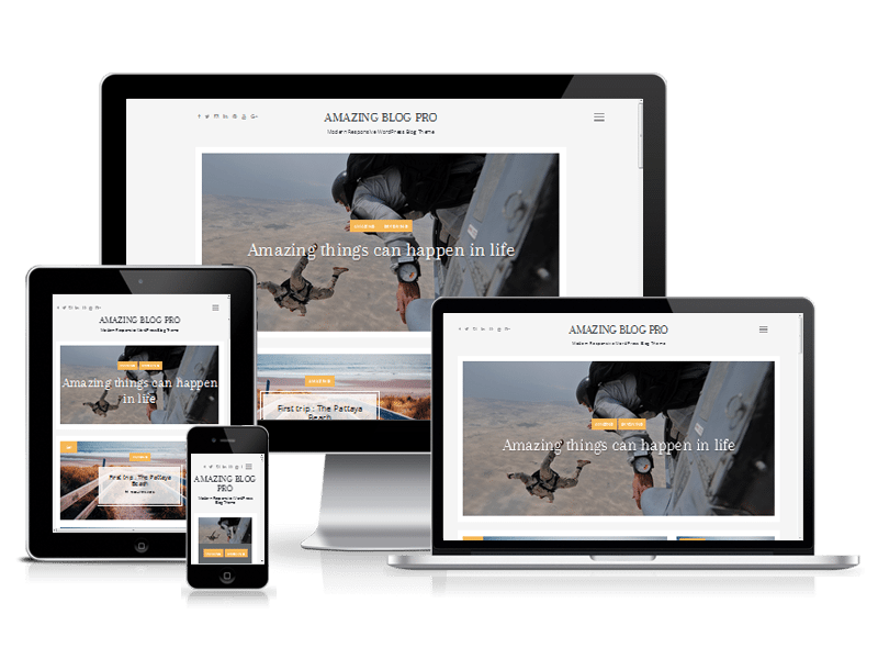 best premium blogging theme: Amazing Blog Pro
