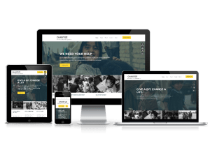 Free Non-Profit Organizations WordPress Theme charitize