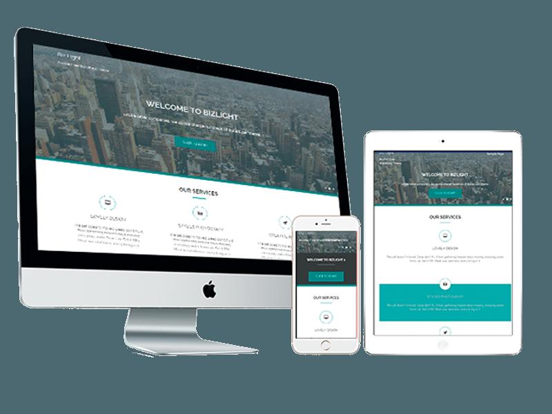 Premium WordPress Themes: Biz Light Pro