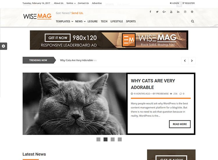 best premium blogging theme: Wise Mag