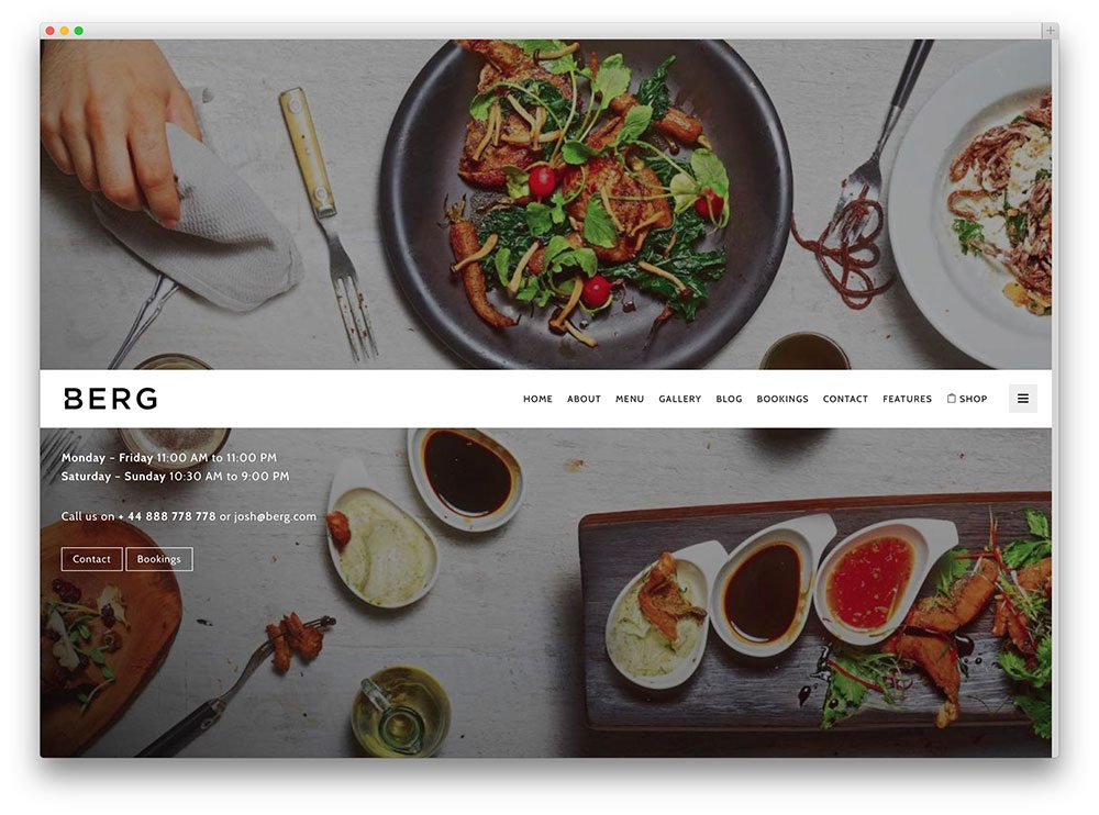 best premium wordpress restaurant themes: Berg