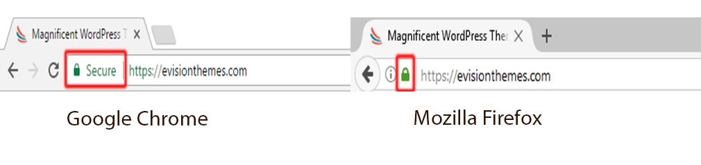 importance of HTTPS builds viewer's trust