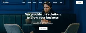 Pixxy WordPress theme